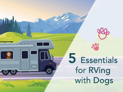 5-Essentials-for-RVing-with-Dogs