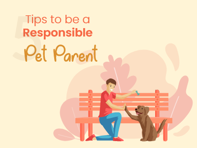 5-Tips-to-be-a-Responsible-Pet-Parent