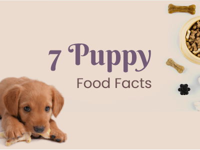 7-puppuy-food-facts