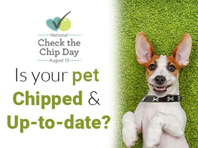 Is your pet Chipped