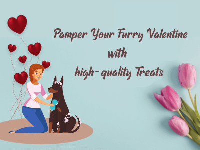 Pamper-your-furry
