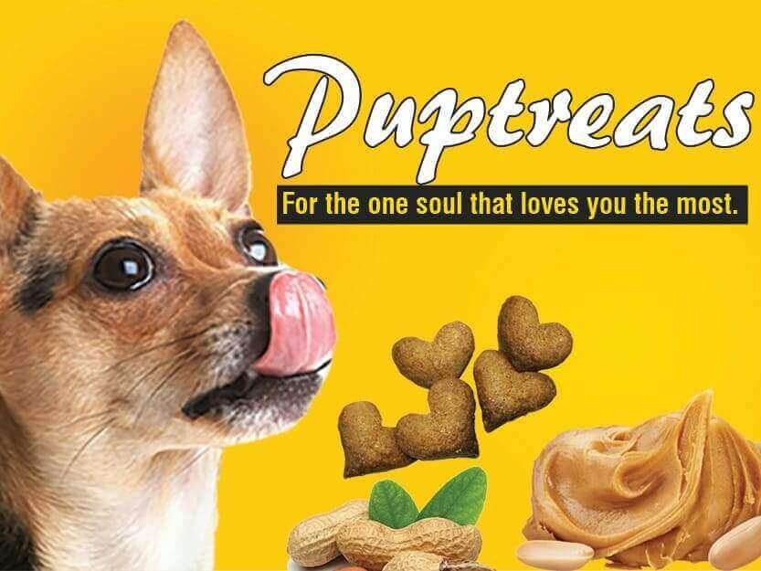 Pup Treat Recipe