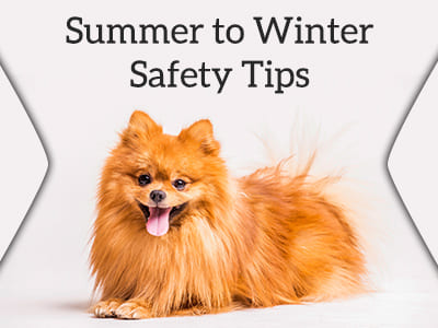 Summer to Winter Safety Tips